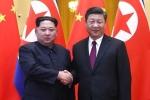 Tân Hoa Xã: Ông Kim Jong-un thăm Trung Quốc, hội đàm với Chủ tịch Tập Cận Bình