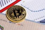 Giá Bitcoin hôm nay 9/8: Vốn hóa 'bốc hơi' 253 nghìn tỷ đồng, nhà đầu tư hoảng hốt