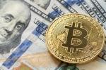 Gia Bitcoin hom nay 6/7: Khong the bat tang khoi muc 6.500 USD hinh anh 1