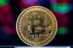 Chuyên gia nhận định sự sụp đổ của Bitcoin: 'Sẽ sớm về 100 USD/BTC'