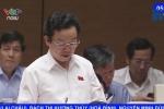 Đại biểu Quốc hội: 'Chưa ai đi tù vì quản lý doanh nghiệp kém'