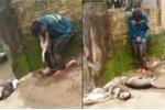 Dân vây bắt, treo xác chó lên cổ tên trộm ở Thanh Hoá