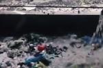 Mục sở thị những 'thủ phủ' rác được vận chuyển đi tái chế làm đồ đựng thức ăn cho người