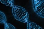 Trung Quốc thử nghiệm chỉnh sửa gen trên người