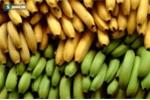 5 thực phẩm được ví như 'thần hộ mệnh' của dạ dày bán đầy chợ Việt