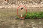 Vì sao cô gái trẻ cởi đồ nhảy múa trên sông Tô Lịch?