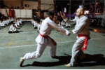 Video: Không đấu Nam Huỳnh Đạo, Flores giao lưu võ thuật tại TP.HCM