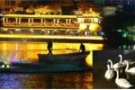 Những hình ảnh cuối cùng của đàn thiên nga ở Hồ Gươm trước khi bị bắt đi