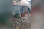 Nhóm nữ sinh đào huyệt, tra tấn 'tình địch' suốt 4 tiếng bằng gậy gỗ và dao rựa bị bắt