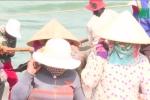 Phú Yên: Ngư dân nô nức đưa cá ngừ về đất liền