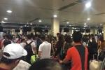 Sân bay Nội Bài và Tân Sơn Nhất ùn ứ sau khi tin tặc tấn công mạng