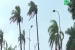 Ảnh hưởng không khí lạnh, miền Trung mưa lớn, nhiều nơi ngập úng
