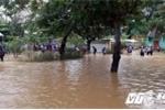 Nghệ An: Áp thấp nhiệt đới đổ bộ khiến 7 người chết