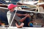Sri Lanka bắt 37 ngư dân Trung Quốc