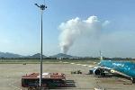 Nắng nóng khủng khiếp, khu rừng ở Hà Nội bốc cháy dữ dội