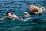 Kinh hãi cảnh cá mập trắng dữ tợn tấn công đoàn làm phim