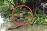 Thi thể người đàn ông đang phân hủy trên sông Sài Gòn