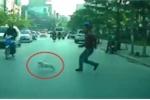 Clip: Người đàn ông lao ra đường đuổi bắt chó, suýt bị ô tô đâm
