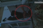 Clip: Trèo ra cửa sổ tầng 6 đòi tự tử nhưng ngủ quên và cái kết bất ngờ