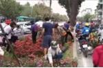 Người dân đánh cả xe ô tô đến 'cướp' hoa sau thượng đỉnh Mỹ - Triều: Lãnh đạo công ty cây xanh nói gì?