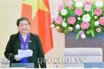 Phó Chủ tịch Quốc hội: Giá đất tăng quá cao dù luật chưa được thông qua