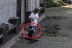Clip: Được 'hối lộ' đồ ăn, chó nhà vẫy đuôi quấn quýt kẻ trộm