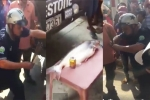 Video: Hết dùng heo quay, tài xế lại dùng cá tra cúng trạm BOT Biên Hoà
