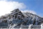 Ảnh: Băng tuyết phủ trắng xoá, đỉnh Fansipan đẹp như cổ tích