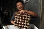 Trang trại gián kiếm tiền tỷ kỳ quái ở Trung Quốc