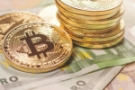 Gia Bitcoin hom nay 13/9: Vo vong sau 1 tuan giam gia hinh anh 1