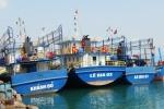 Vì sao hàng loạt tàu vỏ thép hư hỏng nặng?