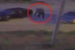 Chồng xách súng bắn chết kẻ làm vợ mất ngủ giữa đêm