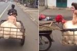 Clip chú rể chở cô dâu bằng xe chở hàng gây bão mạng