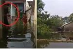 VIDEO Trực tiếp: Huyện Chương Mỹ - Hà Nội ngập đến nóc nhà, dân câu cá trước cổng