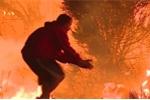 Clip: Chàng trai xông vào biển lửa cứu thỏ hoang khiến dân mạng dậy sóng