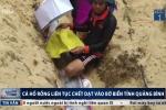 Cá hố rồng liên tục chết dạt vào bờ biển Quảng Bình