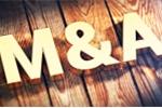 Những thương vụ M&A đáng chú ý thị trường bất động sản năm qua