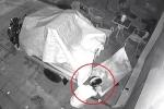 Trộm rình lấy điện thoại, bị người đàn ông dọa 'sợ chết khiếp'