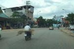 Chở thi thể bằng xe máy: Bộ Y tế yêu cầu xử lý nghiêm
