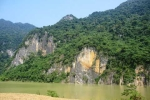 Ly kỳ cây thuốc giúp người chết sống lại ở vách đá Thanh Hóa