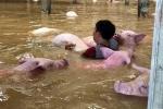 Các doanh nhân chung tay ủng hộ đồng bào bị lũ lụt ở Thanh Hóa