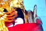 Kỳ lạ chuyện rắn liên tục xuất hiện trong ngôi đền ở Phú Thọ