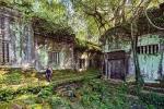 Khám phá ngôi đền trong rừng rậm, kỳ bí và cổ kính hơn cả Angkor Wat
