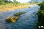 Tìm thấy thi thể bé trai mất tích ở Thanh Hóa dưới khúc sông cách nhà 3km