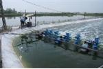 Công nghệ mới xử lý môi trường nước nuôi trồng thủy sản và sản xuất phân bón vi lượng