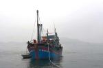 'Đạo chích' đột nhập tàu cá khoắng sạch tài sản