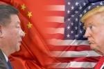 Việt Nam sẽ là 'vịnh tránh bão' trong cuộc chiến thương mại Mỹ - Trung