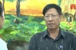 Gần 50% người xét nghiệm ở Hà Nội nhiễm thuốc trừ sâu trong máu: Chuyên gia lên tiếng