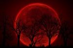 Đâu là nơi lý tưởng để quan sát hiện tượng 'trăng máu' của thế kỷ 21 rõ và đẹp nhất?
