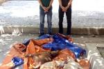Hàng chục cảnh sát vây bắt nhóm 'cẩu tặc' thuê xe ô tô đi trộm chó